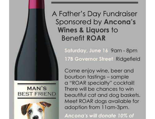 Father's Day Fundraiser at Ancona's!
