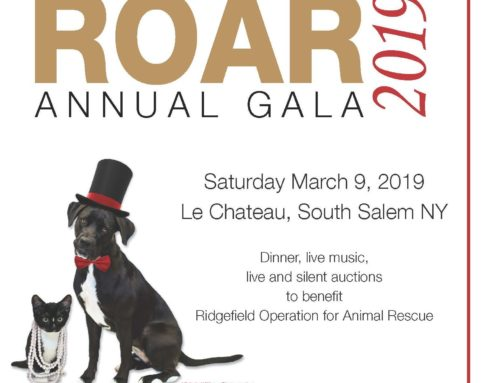 ROAR's Annual Gala – Save the Date!