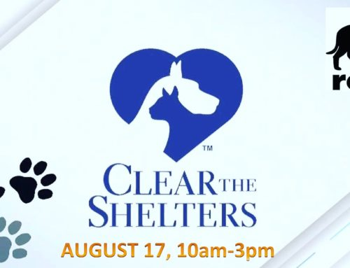 Clear The Shelters 2019 – Aug 17!