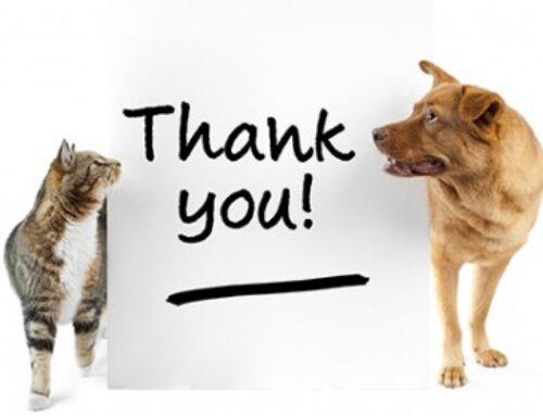 ROAR Recognizes Our Amazing Volunteers!