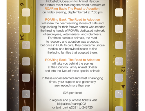 Don't Miss This Event … ROARing Back: The Road to Adoption